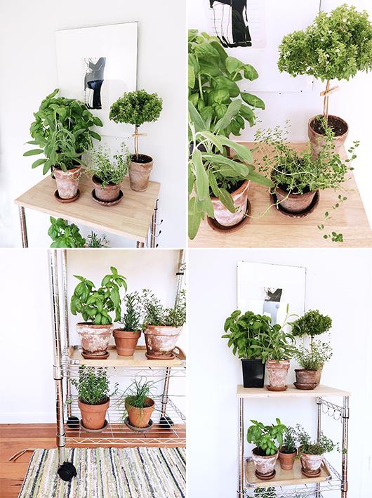 plantstand-3